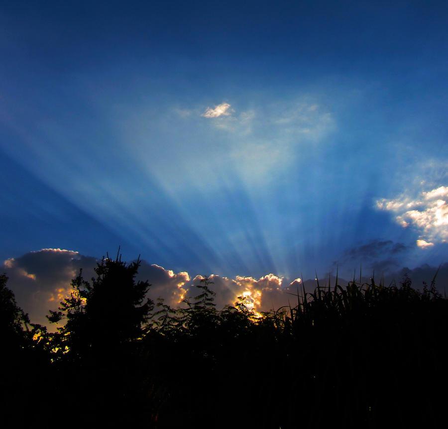 Rays of light by rollarius55