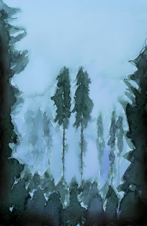 The woods' secret gathering