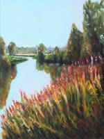 Morning creek by rollarius55