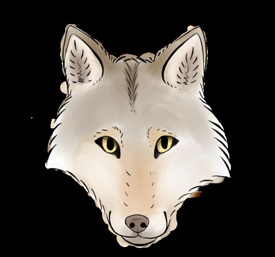 wolfer_by_nightshadelewolf-dcqd6bg.png