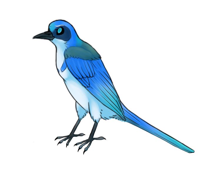 birb_by_nightshadelewolf-dcqet7h.png