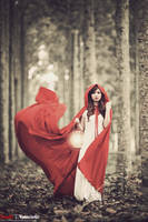Red riding hood v.1 by bwaworga
