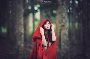 Red riding hood v.2 by bwaworga
