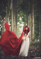 Red riding hood v.4 by bwaworga