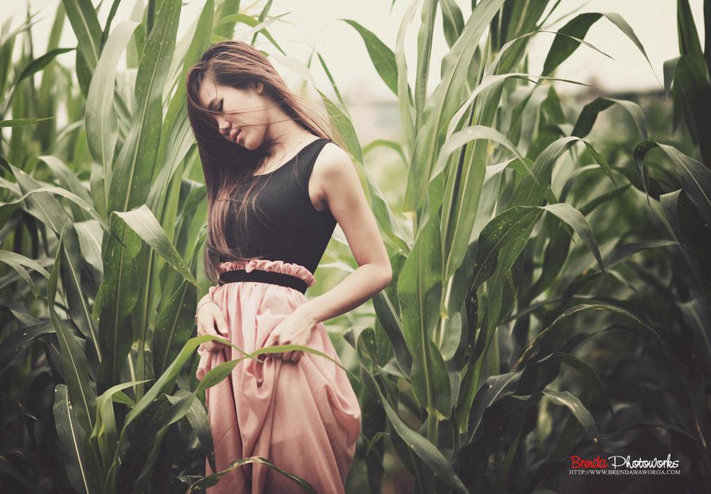 taste like a cornfield by bwaworga