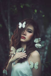 White butterfly by bwaworga