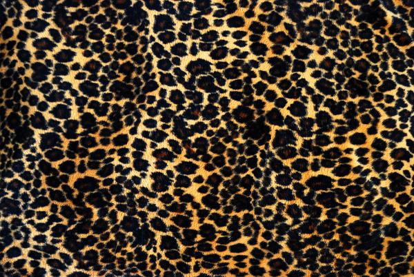 Pattern 006 by Katibear-Stock