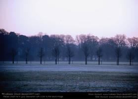 Scenery 066