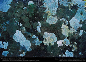 Texture 059 by Katibear-Stock
