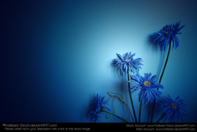 Flowers Background Stock by Katibear-Stock