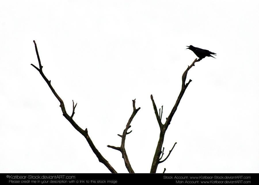 Animals 033 - Bird Silhouette by Katibear-Stock