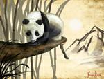 Asian Panda O: