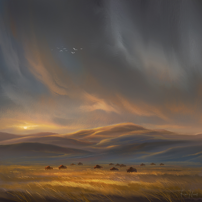 The hills were glowing by FionaHsieh