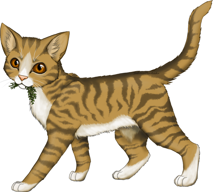 Felodius Leafpool_by_athousandpaws-d3cix9k