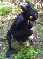 My Toothless Cosplay by creanima