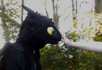 How To Tame Toothless