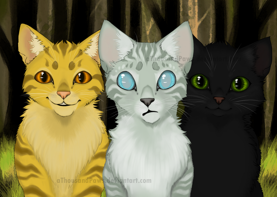Warrior Cats Power Of Three Game - bigime