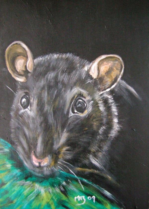 Ronin Ratty by Mazzi294
