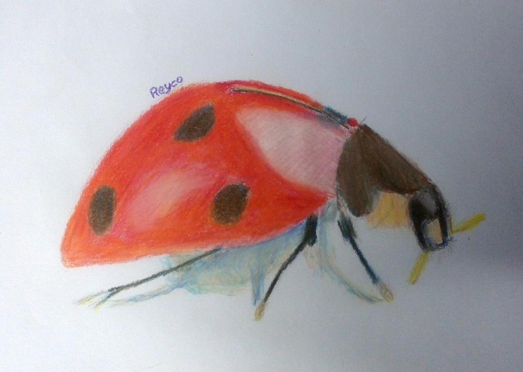 Roach - Ladybug Hybrid by reyco1982