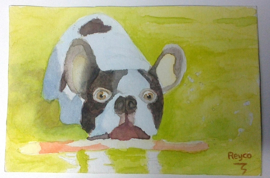 Dog Painting using Watercolor by reyco1982