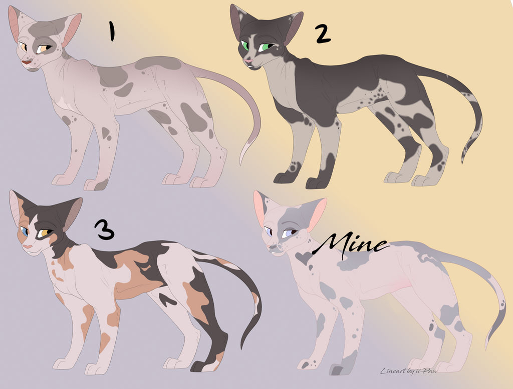 Sphynx Cat Adopt Batch (OPEN) by iiPaw on DeviantArt