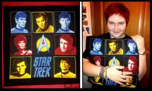 Star Trek the pillow!