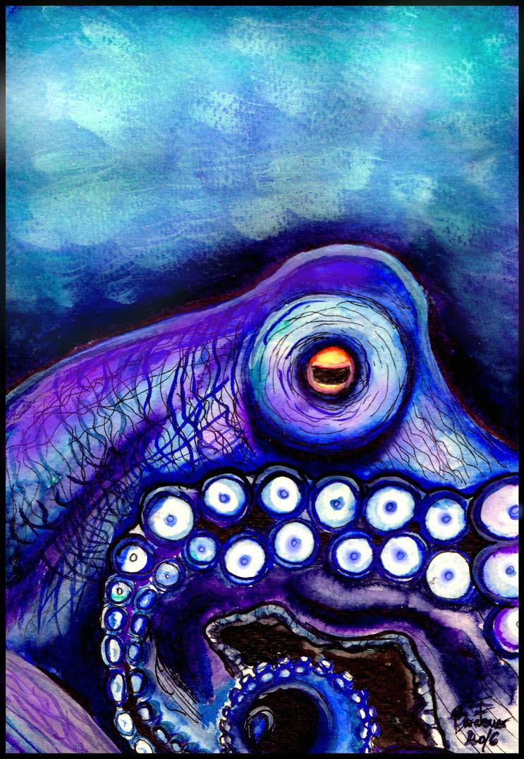 Octopus by Bara-Feuer