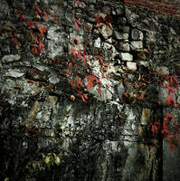 Old Mill Wall by vetal-vetal