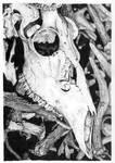 Deer skull on a pile by GrayWolfcg