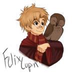 Felix Lupin first year