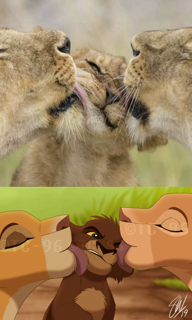 The Lion King - Kisses by TC-96