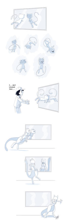 Vs The Mirrors