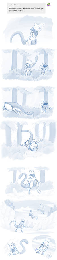 The other Mewtwo