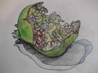 Unripe Pomegranate by cheasedragon