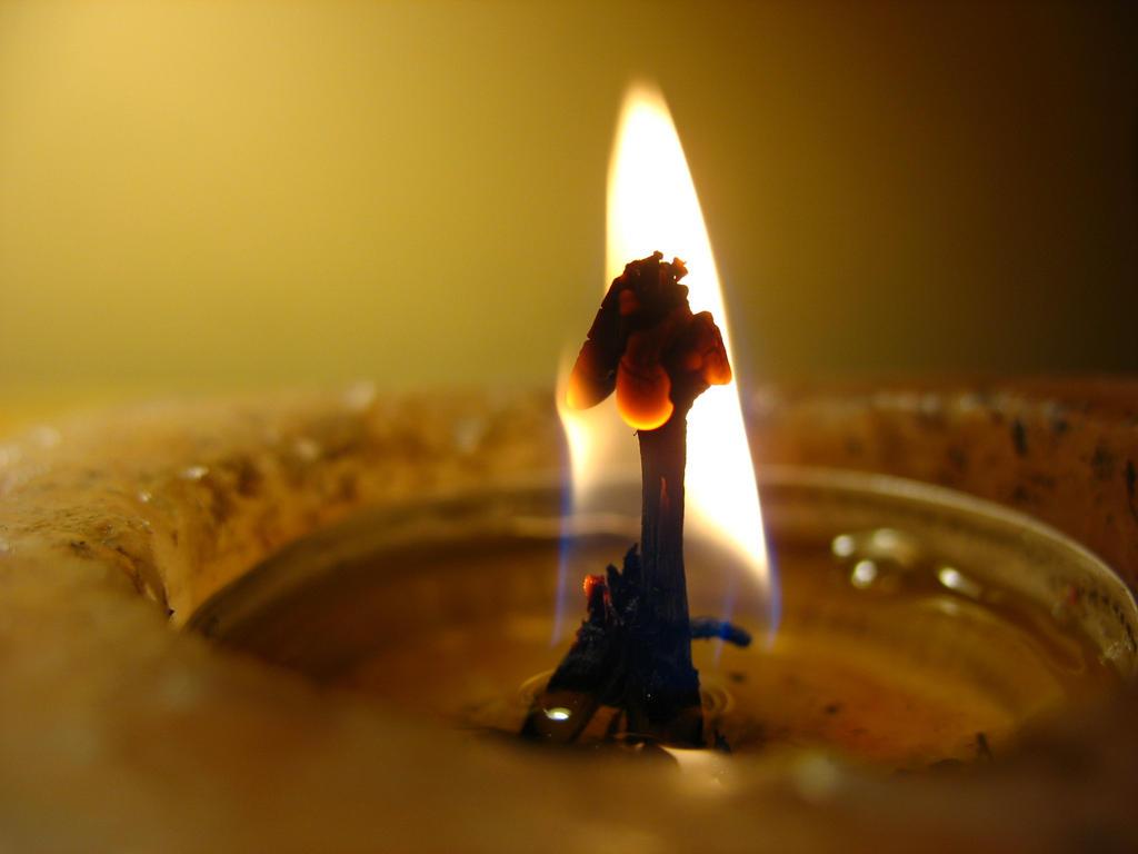 Flameflower I