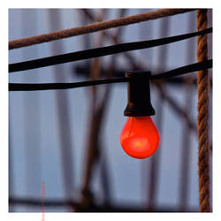 the red bulb