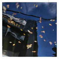 autumn constellations by EintoeRn