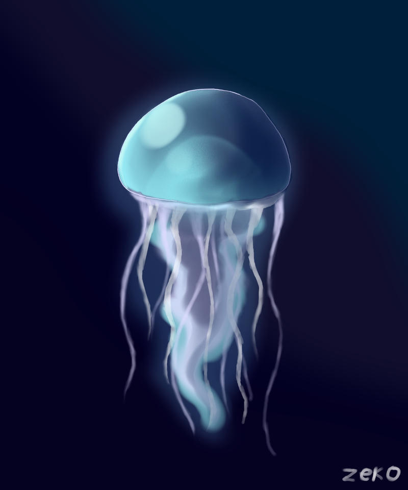 Jellyfish by Captain-Zeko