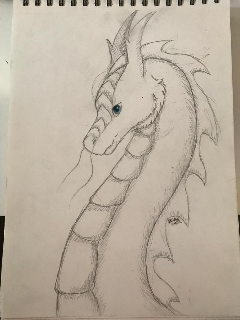 dragon doodle by Captain-Zeko