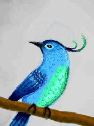 Bird by Captain-Zeko