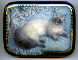 Cat by Fantasy-fairy-angel
