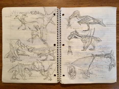 Wyvonoptera Sketches Pt I