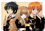 Harry Potter Gang