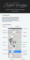 Layers Tutorial 1 - Anatomy