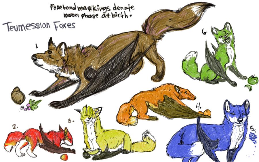 Teumessian fox greek mythology - photo#27
