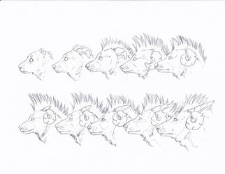 .Helhund Aging Chart. by CheshireSmile