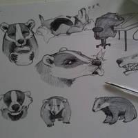 .Badger Buddy.