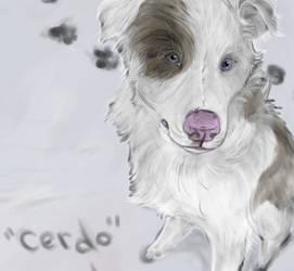 .Cerdo. by CheshireSmile