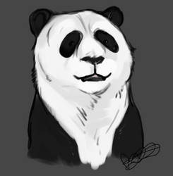.Giant Panda and News. by CheshireSmile