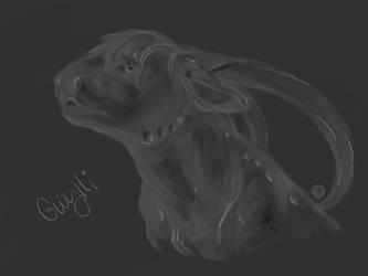 .Gwylli in Grey. by CheshireSmile